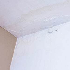 Ceiling Leakages